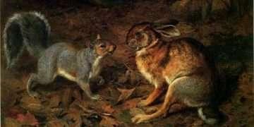 Tavşan ile Sincap Masalı