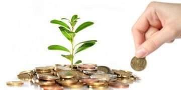 Yatırım için sermaye çeşitleri nedir?