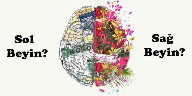 Beyninizin Hangi Tarafı Baskın? Test Edin!