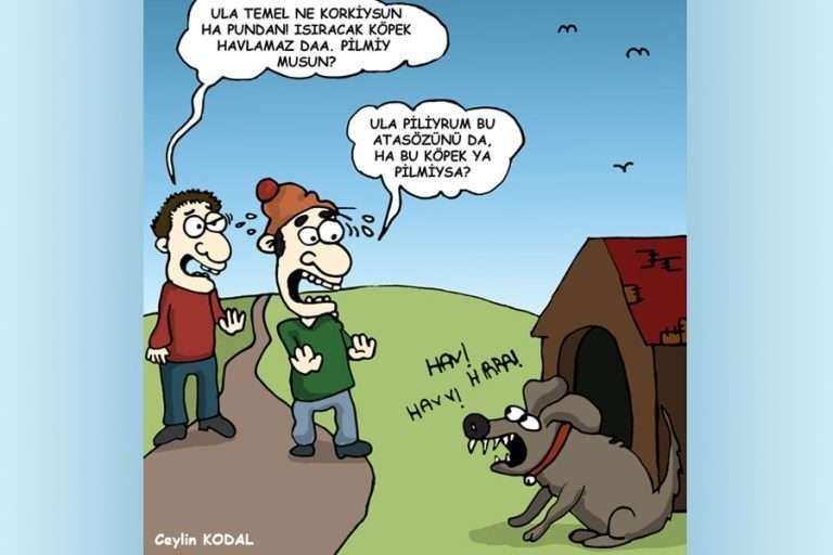 Havlayan Köpek Isırmaz Fıkrası