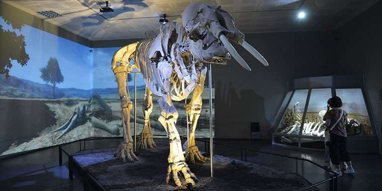 Türkiye'nin En Önde Gelen 10 Arkeoloji Müzesi