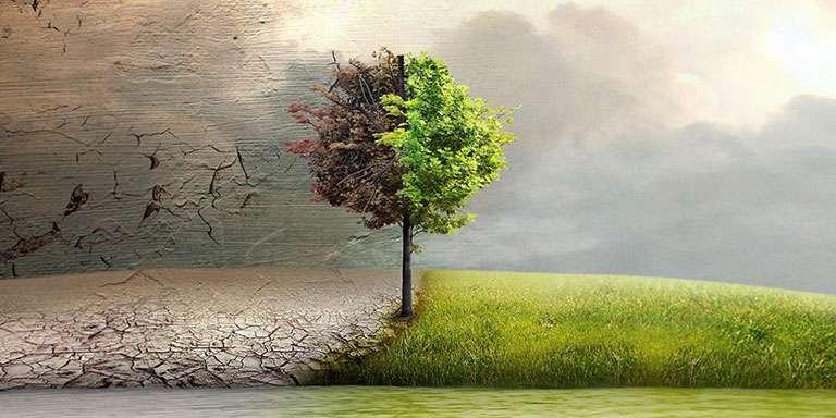 Felaket Kapıda: İklim Krizi Hakkında Bilmeniz Gerekenler