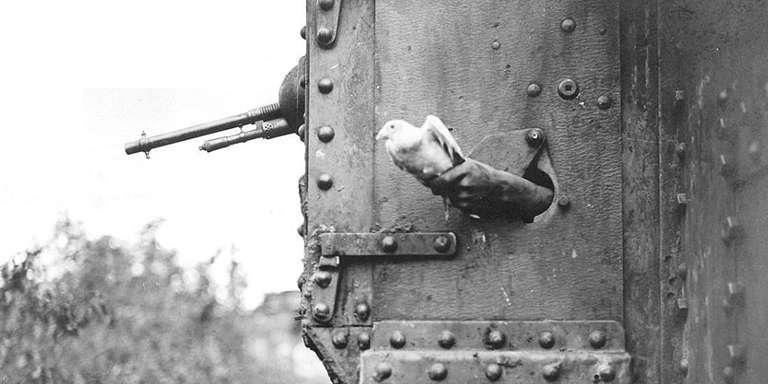 savaşlarda kahramanlaşan hayvanlar