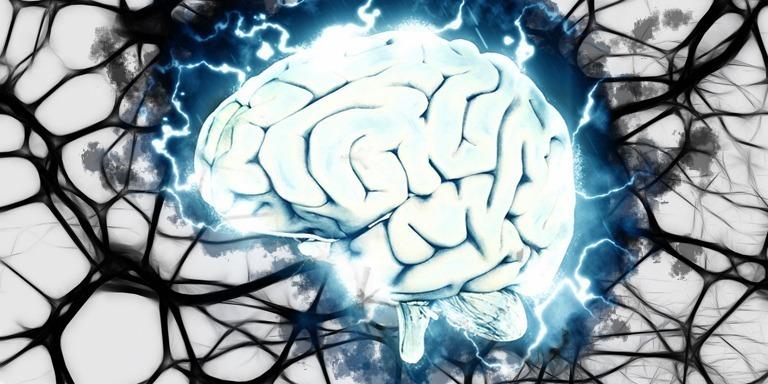 Beynin En Canlı Dili Görsel Zekayı Geliştirecek Öneriler