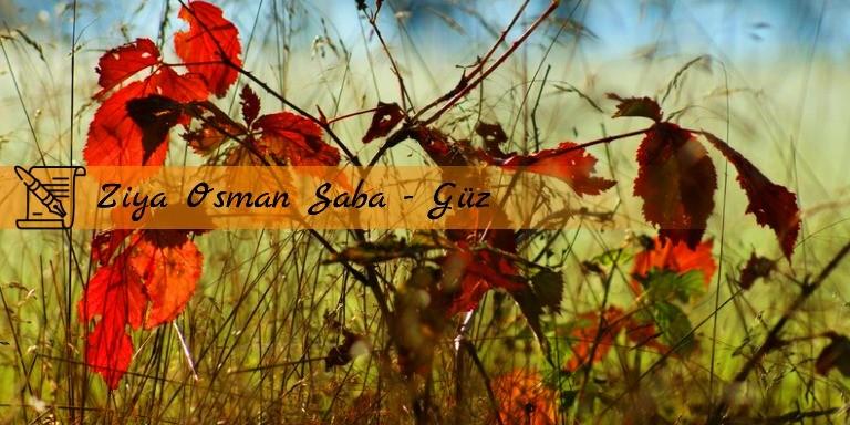 Şairlerin Büyülü Kaleminden En Anlamlı Sonbahar Şiirleri