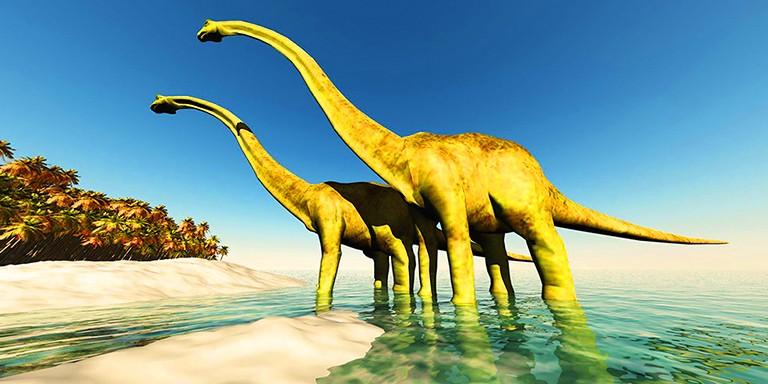 Mezozoik Çağ'ın Efsane Hayvanları Dinozorlar Hakkında Her Şey