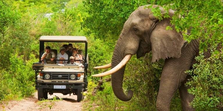 Güney Afrikayı Ziyaret Etmeden Önce Bilmeniz Gereken 10 Şey