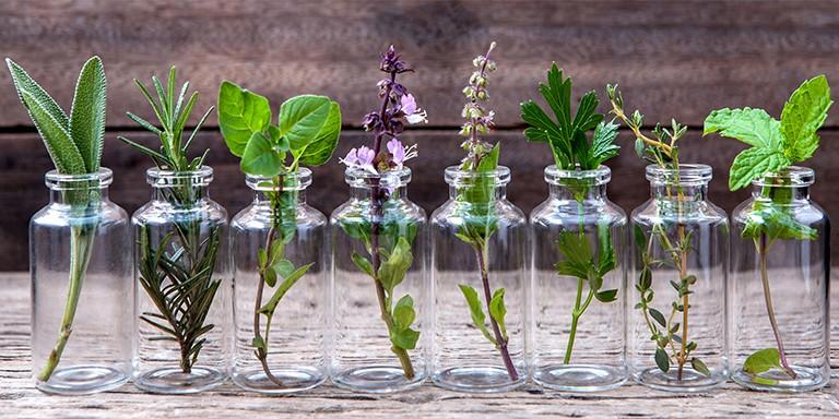 İyileştirici Gücüyle Tanınan Aromaterapi Hakkında Merak Edilenler