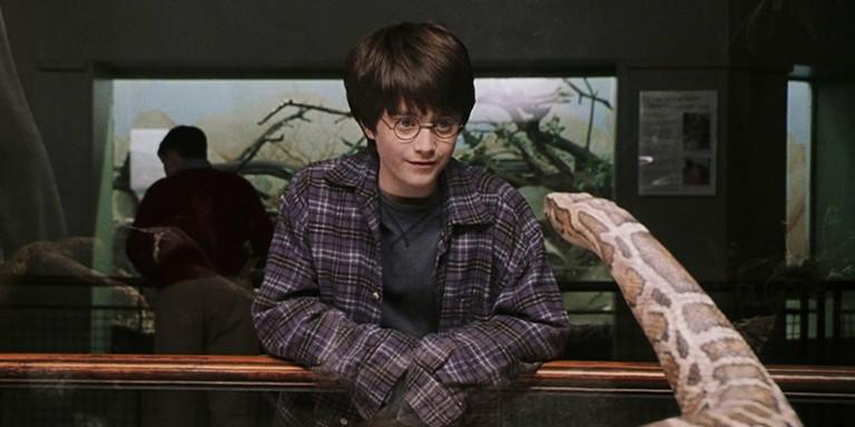 Muggle Olanların Harry Potter'a Dair Deneyimleyebileceği Yollar