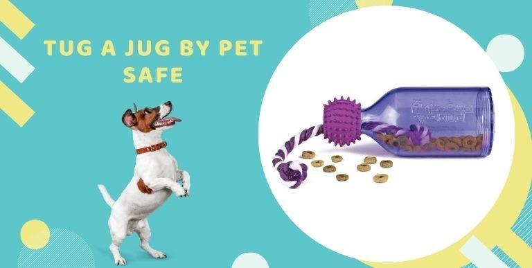 Köpeklerde Gelişim İçin En İşe Yarar Zekâ Oyuncakları