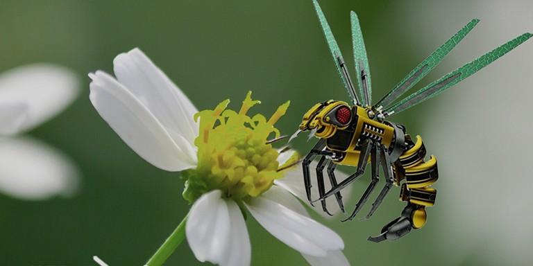 Filmlere Konu Olan Robot Arılarla Tanışma Vakti