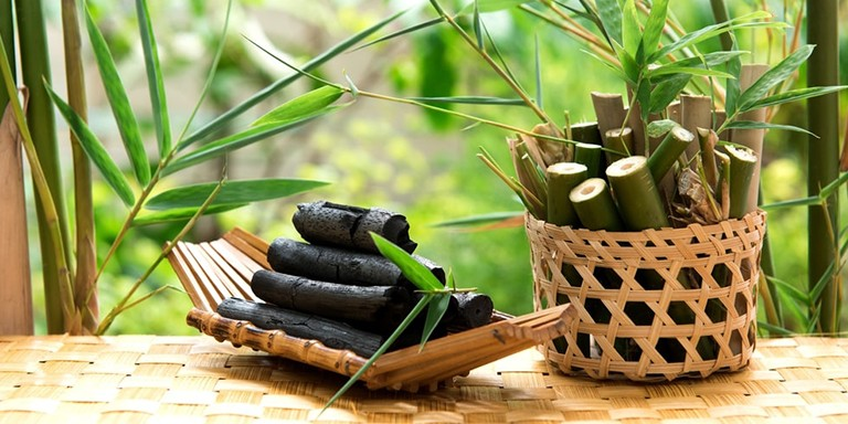 İklim Krizi Mücadelesinde Bambu Kullanımının Önemi