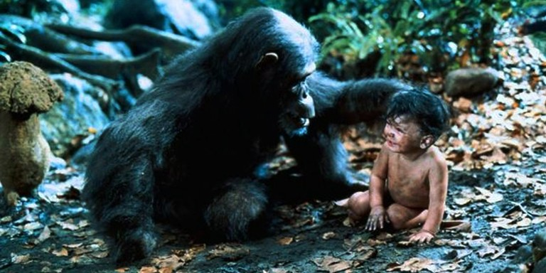 Yabani Hayvanlarla Büyümüş Çocukların Enteresan Yaşam Öyküleri